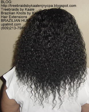 Virgin Brazilian curly human hair Treebraids Back2152.