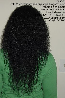 Cornrow Tree Braids Wet n wavy human hair Back177.