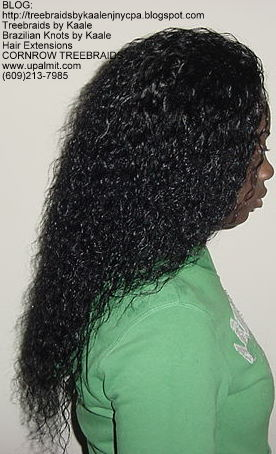 Cornrow Tree Braids Wet n wavy human hair Right179.