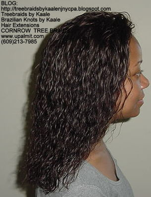 Wet and wavy Treebraids, Right234.