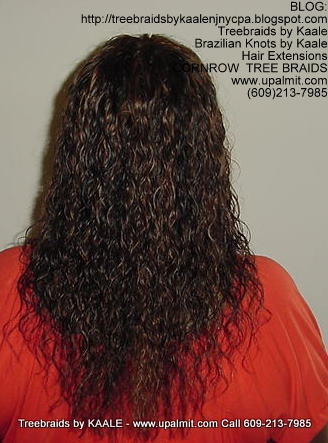 Wet and wavy Treebraids, Back240.