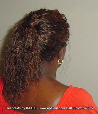 Wet and wavy Treebraids, 2Back241.