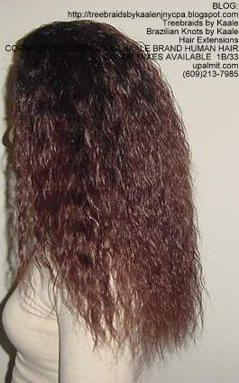 Cornrow Tree Braids Wet n wavy human hair Left186.