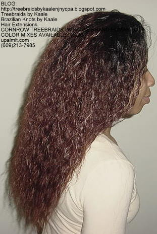 Cornrow Tree Braids Wet n wavy human hair Right187.