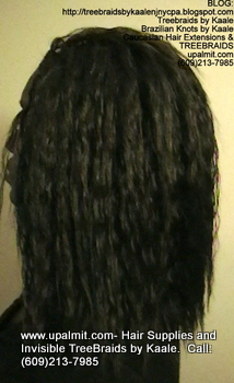 Tree Braids- Cornrows with Wavy human hair, Left2364.