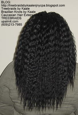 Tree Braids with Wet n Wavy KAALE Brand human hair Back322.