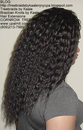 Tree Braids- Wavy Tree Braids Right226.