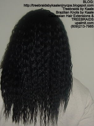 Tree Braids using KAALE Brand Wet n Wavy Tangle Free hair Back298.