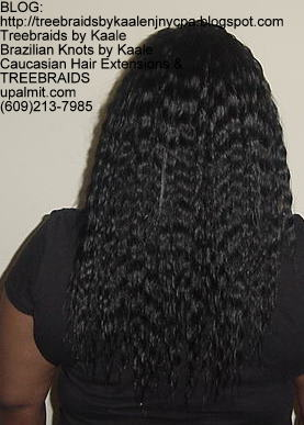 Tree Braids with Wet n Wavy KAALE Brand human hair Back318.