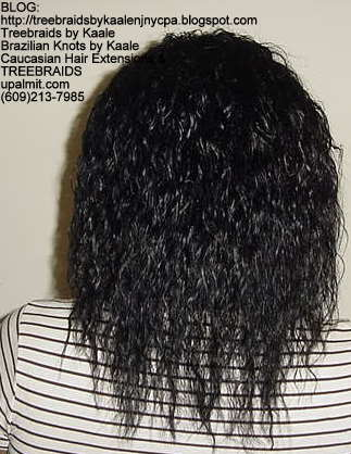 Treebraids with Wet n Wavy human hair Back2197.