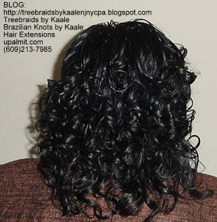 Curly Tree Braids, Kaale Brand hair Back137.