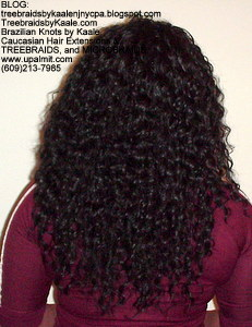 Tree Braids by Kaale, cornrow treebraids in curly 1Bk313.