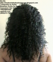 Tree Braids by Kaale- Individuals with curly hair color #1b Back2448.