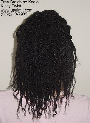Kinky twists with human hair- back view.