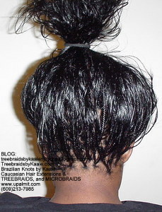 Tree Braids by Kaale- Indian remy hair in individual treebraids Bk.