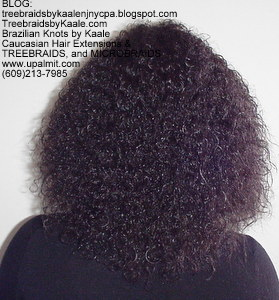Tree Braids by Kaale, cornrow treebraids SmallMedium size Bk2013.