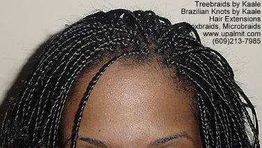 Box braid Carlos Top.