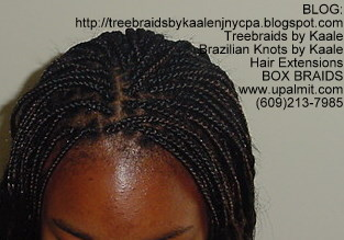 Long Box Braids- child in NJ, Top.