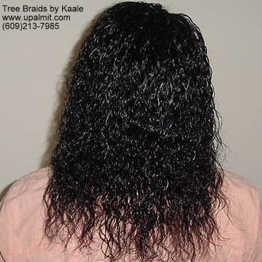 wet and wavy individual treebraids 2.