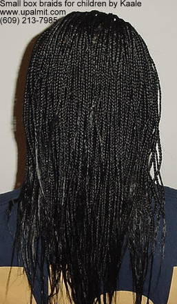 Box braids, small- children's box braids styles, back view.