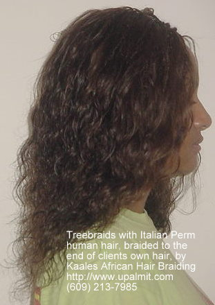Treebraids by Kaales African hair braiding .