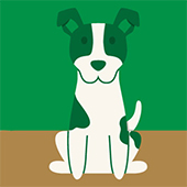 link to  14 Ways To Go Green With Your Dog