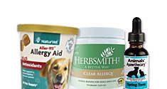 Allergy Aids for Dogs and Cats