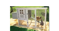 Bird Cages and Coops for Sale
