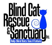 Blind Cat Rescue