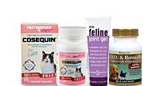 Cat Joint Supplements