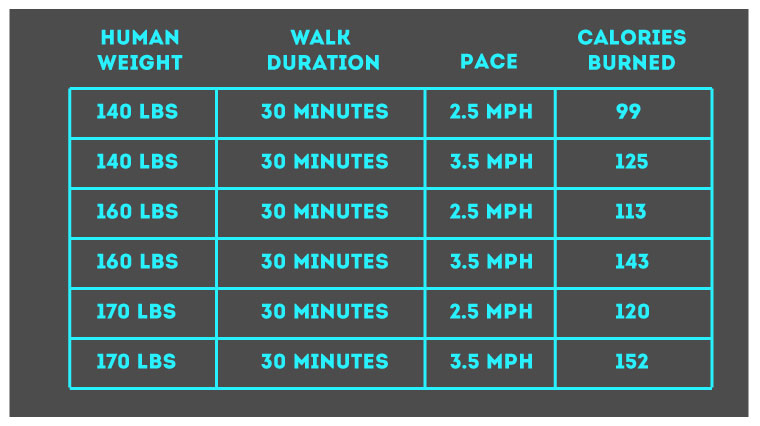 Burning Calories with Hike
