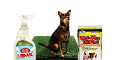 Cleaning and Sanitation Products for Dogs