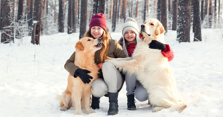 two young ladies and 2 dogs are playing in snow