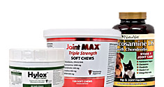 Extra Strength Joint Support