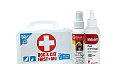 First Aid and Remedies for Dogs and Cats