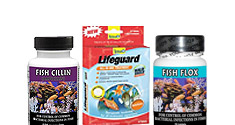Fish Medications & Vitamins