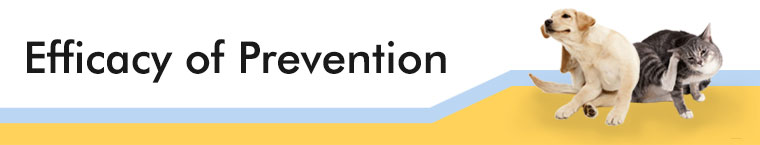 Efficacy of Prevention