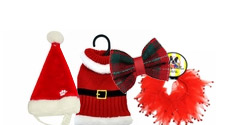 Holiday Wear for Pets