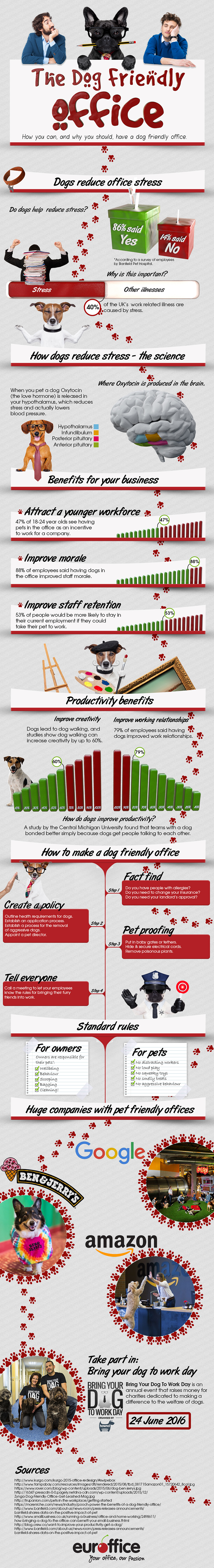 Making Your Office Pet Friendly