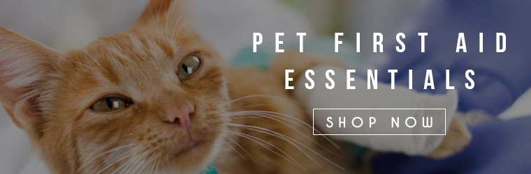 Pet First Aid Essential Shop Now Banner