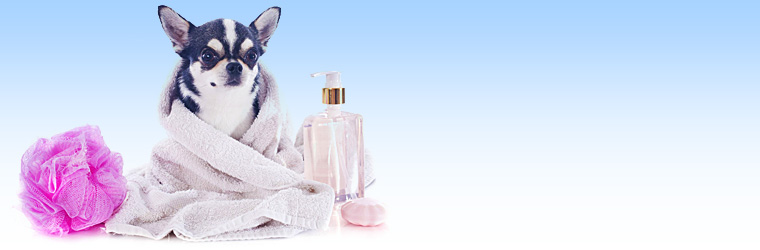 Skin-condition-products-banner