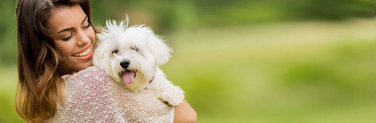 Urinary Tract and Bladder Health Products for Pets