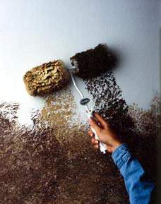 Wall Magic Wagner Wool roller kit in action