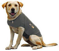 Thunder Vests For Dogs Reviews