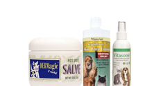 Anti-Itch and Hot Spot Skin solutions for pets