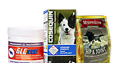 Hip & Joint Maintenance for Dogs, Cats, and Horses