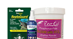 Reptile Care Products