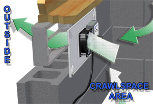 Image Result For Crawle Fans