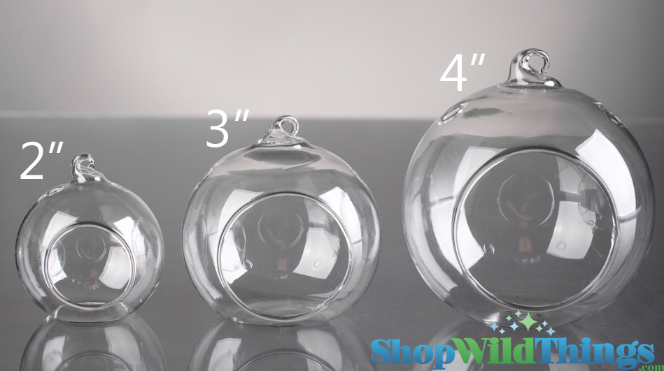 Hanging Glass Round Candle Holders Glass Round Hanging