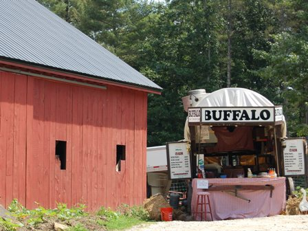 Buffalo covered wagon